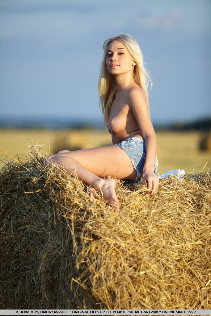 aljena-a-hay-bale-met-art-05