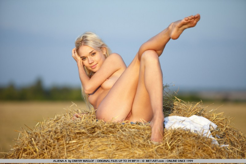 aljena-a-hay-bale-met-art-14