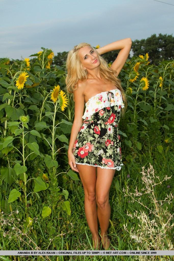 amanda-b-sunflowers-01