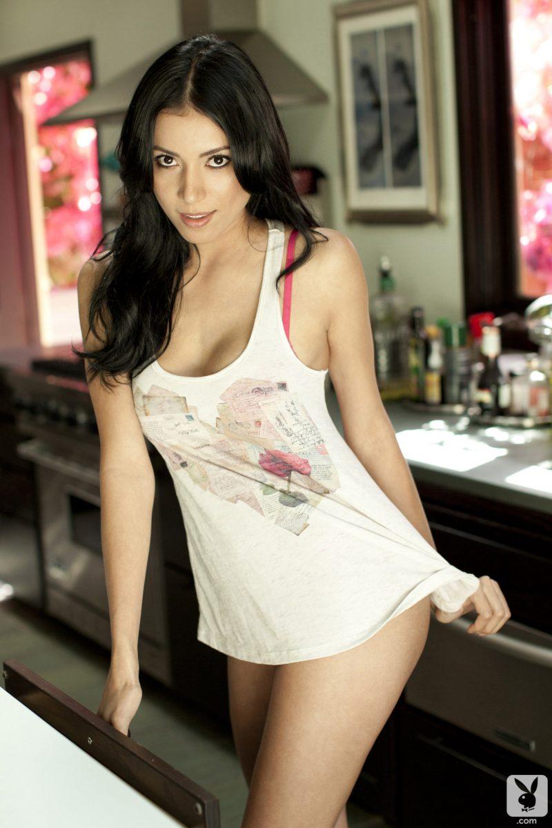 ana-ramirez-pink-lingerie-nude-playboy-03
