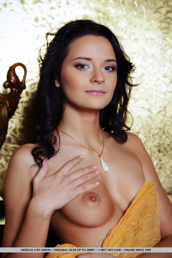 ardelia-a-golden-wall-metart-18