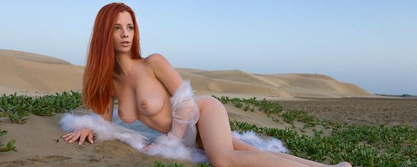 Ariel on sand dune