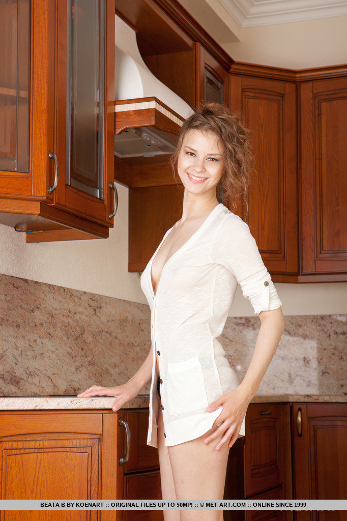 beata-b-kitchen-met-art-01