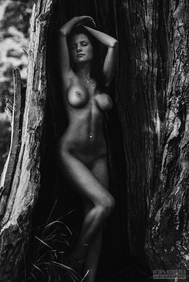 b&w-erotica-vol11-68