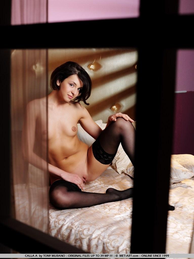 calla-a-bedroom-met-art-04