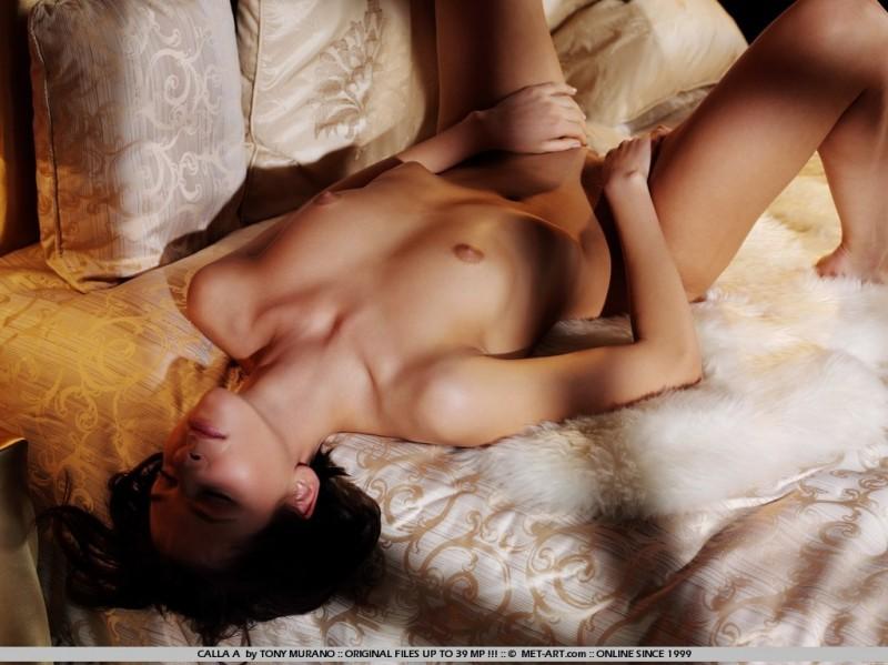 calla-a-bedroom-met-art-09