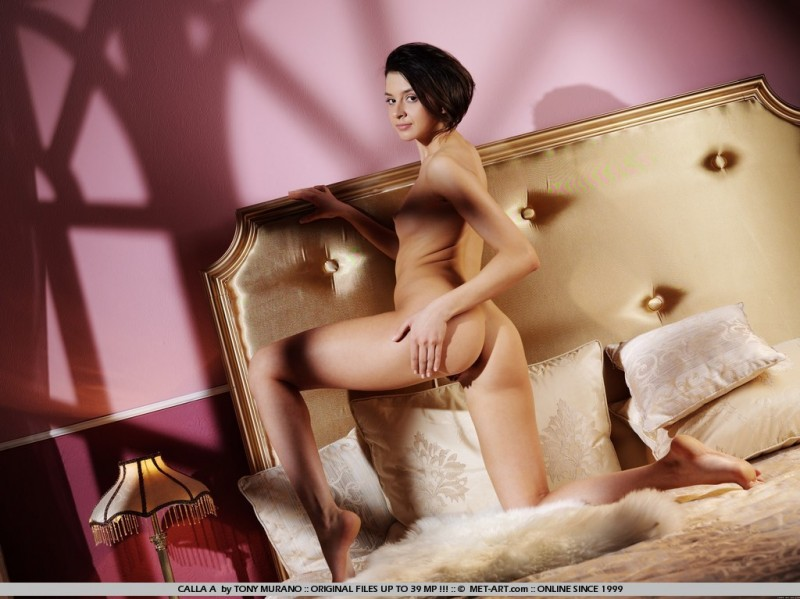 calla-a-bedroom-met-art-13