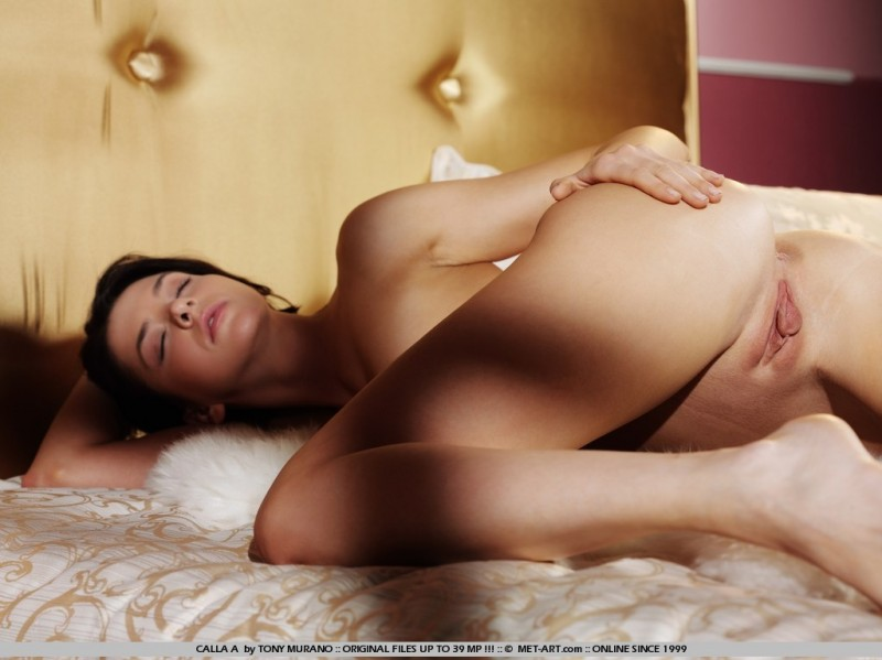 calla-a-bedroom-met-art-18