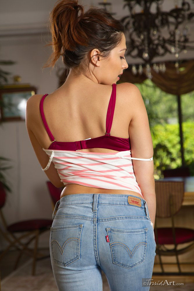 cassie-laine-jeans-torridart-02