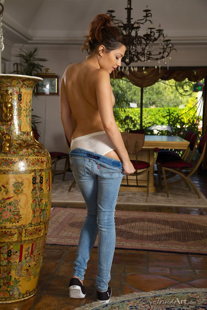 cassie-laine-jeans-torridart-05