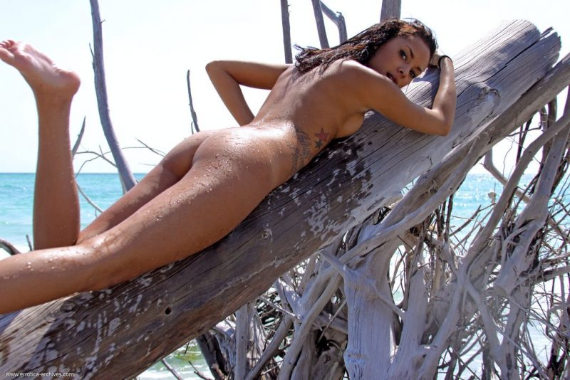 danica-seaside-beach-nude-errotica-archives-08