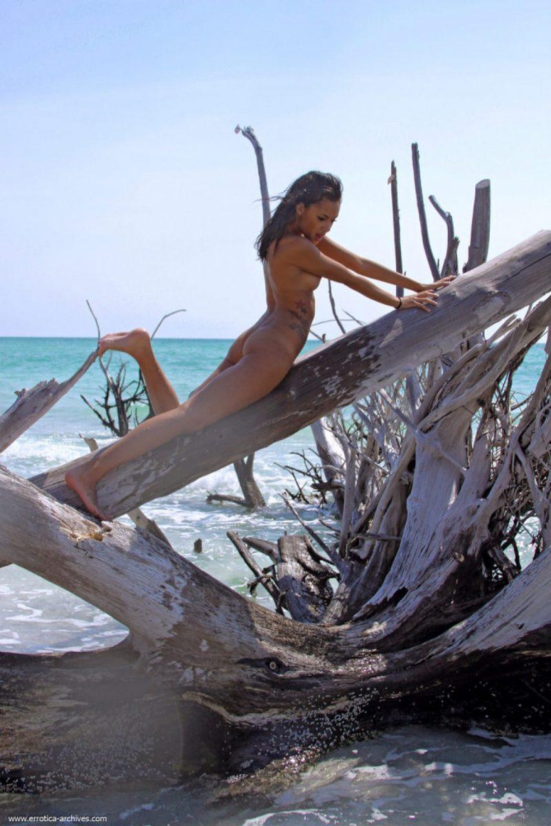 danica-seaside-beach-nude-errotica-archives-11