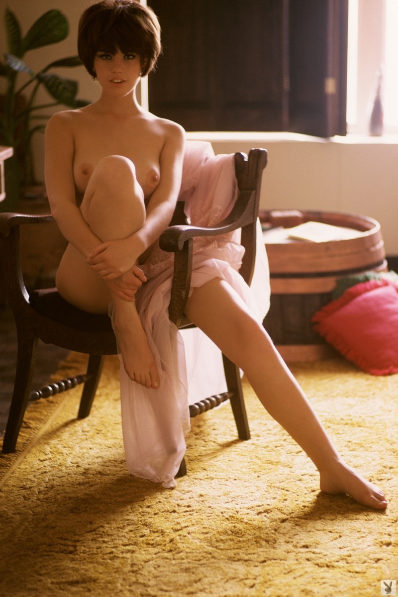 dianne-chandler-vintage-retro-playboy-22