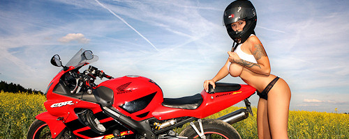 Dominno & Honda CBR 600F