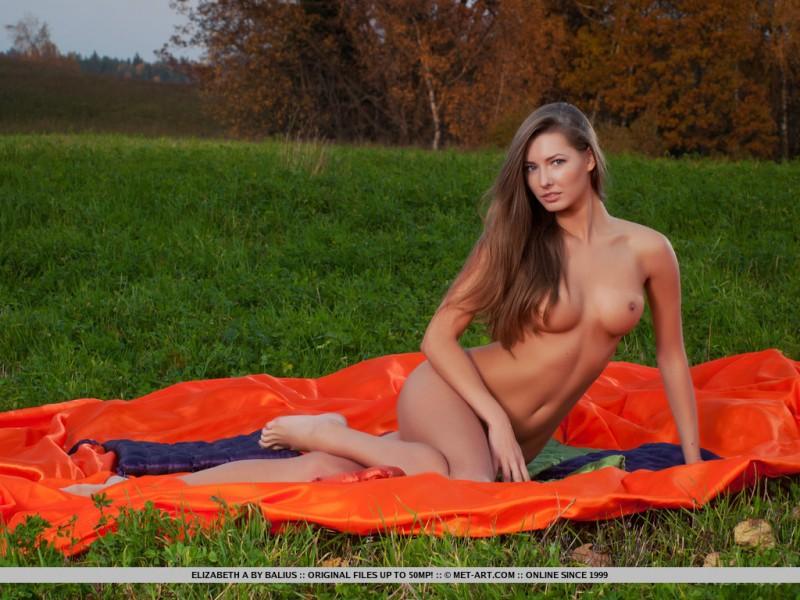 elizabeth-a-blanket-met-art-09