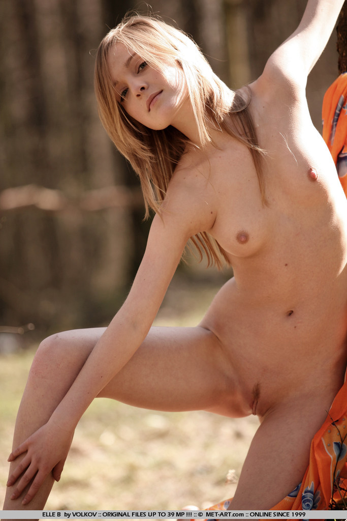 elle-b-nude-in-forest-metart-19