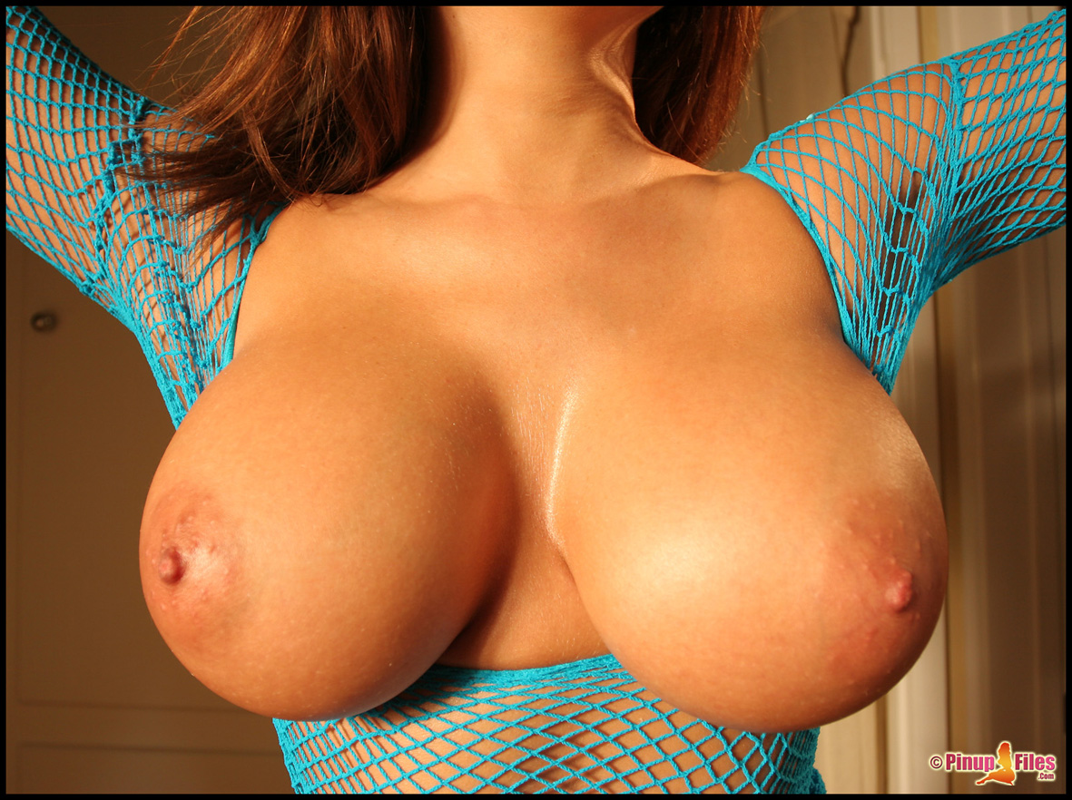 erica-campbell-boobs-naked-blue-fishnet-pinupfiles-14