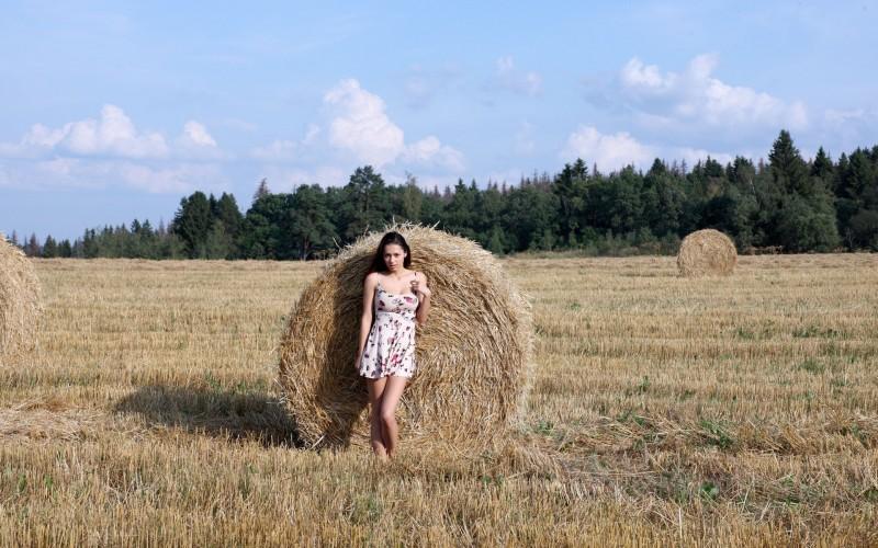 helga-lovekaty-grain-field-nude-02