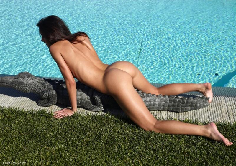 kocsis-orsi-nude-poolside-crocodile-hegreart-01