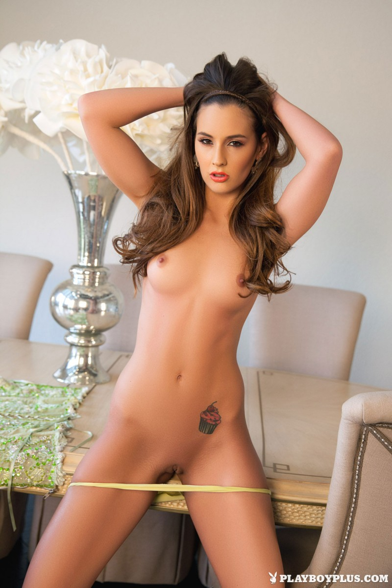 kylie-cupcake-morgan-nude-table-playboy-10