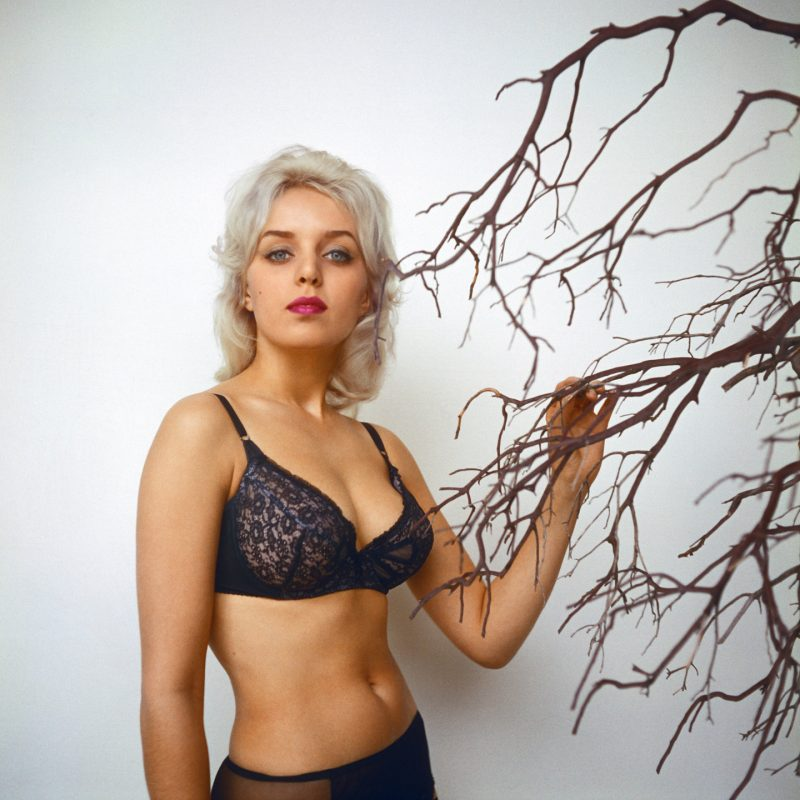 linda miss erotica