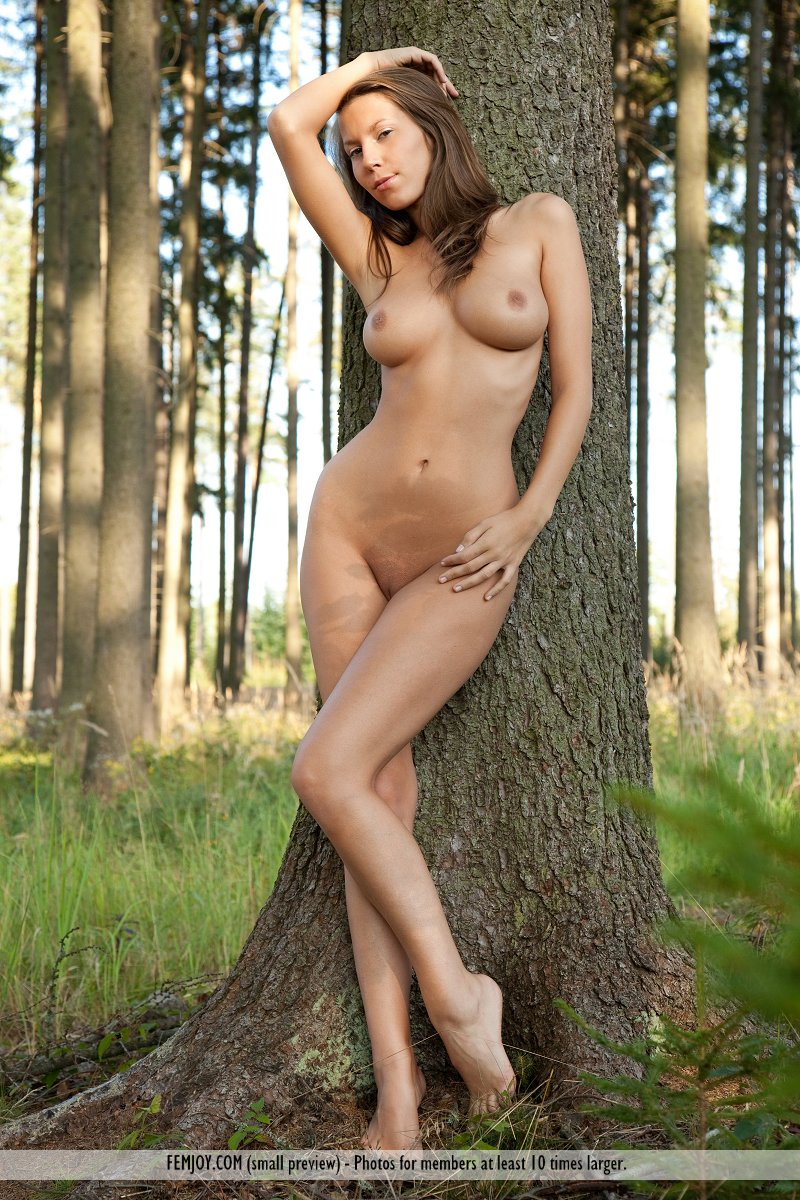 sexy nude wild woman in the woods
