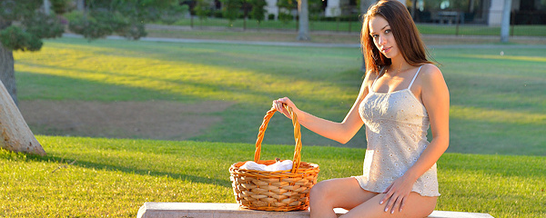 Madi Meadows – Picnic basket