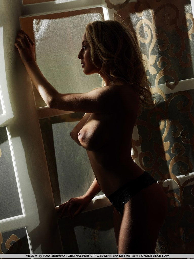 millis-a-bedroom-met-art-05