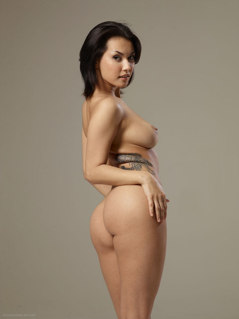 Asian Nudes Galleries 41