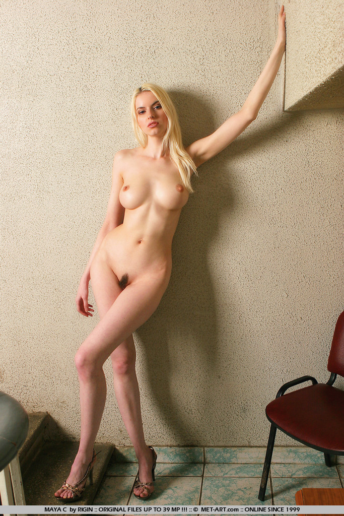 Are maya c met art nude
