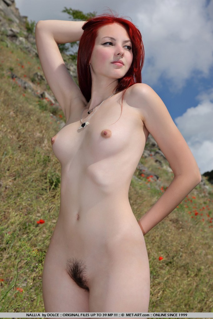 nalli-a-redhead-mountains-met-art-09