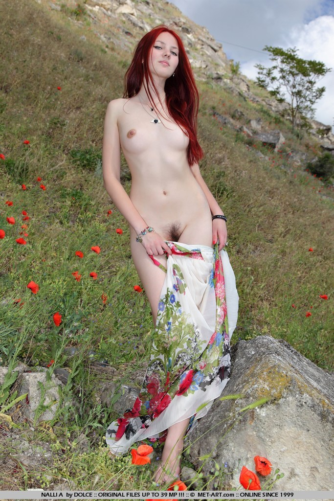 nalli-a-redhead-mountains-met-art-17