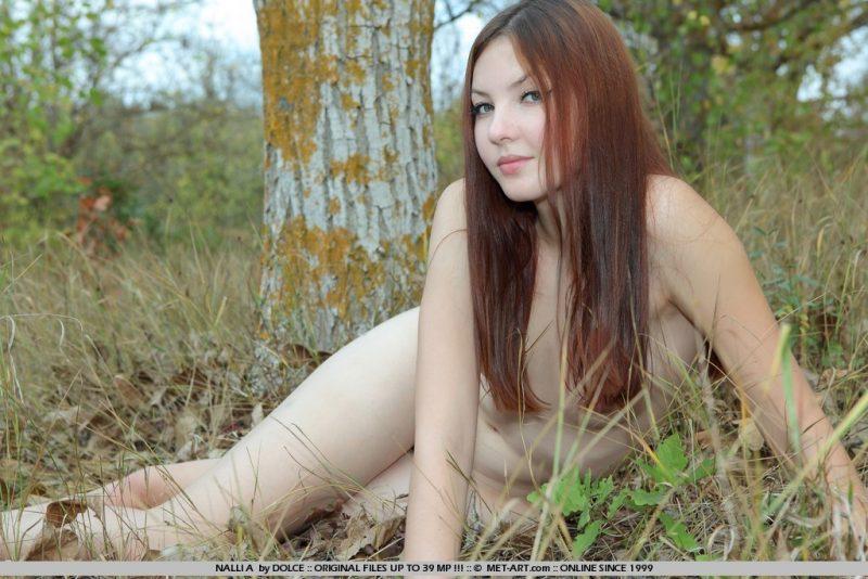 nalli-a-woods-nude-metart-05