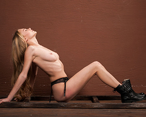 jane-f-ladder-blonde-nude-femjoy