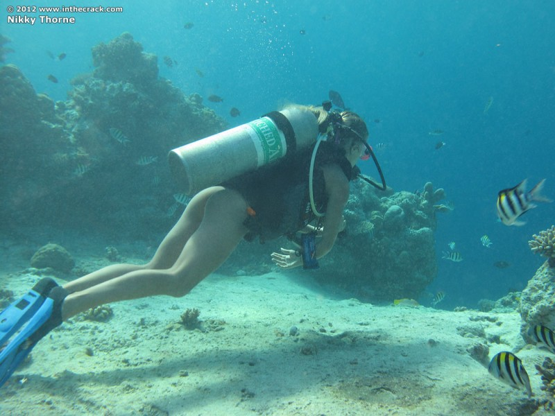 The caribbean naked girl diver girls stole