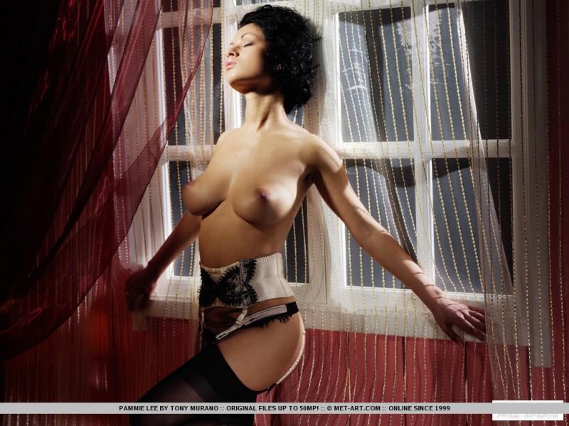 pammie-lee-lingerie-met-art-07