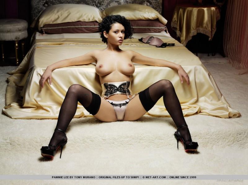 pammie-lee-lingerie-met-art-08