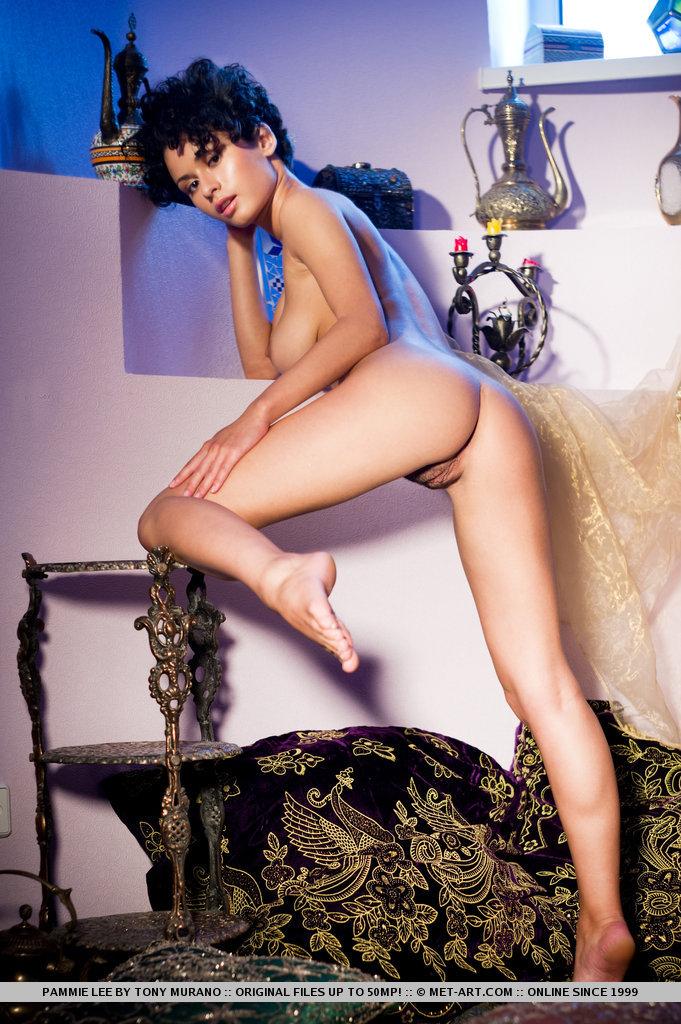 pammie-lee-nude-met-art-09