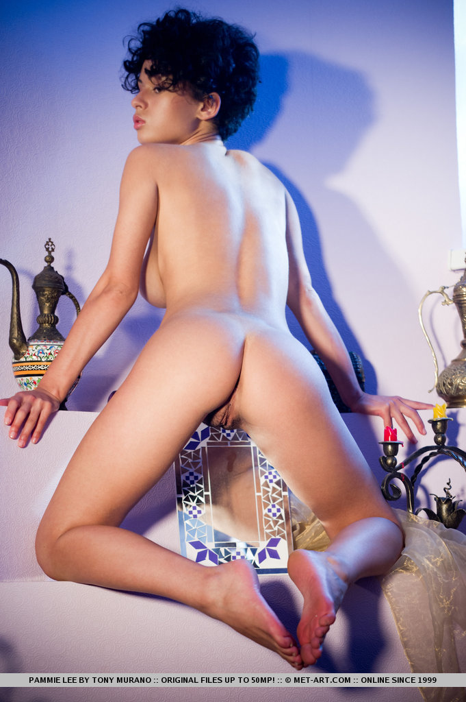 pammie-lee-nude-met-art-11