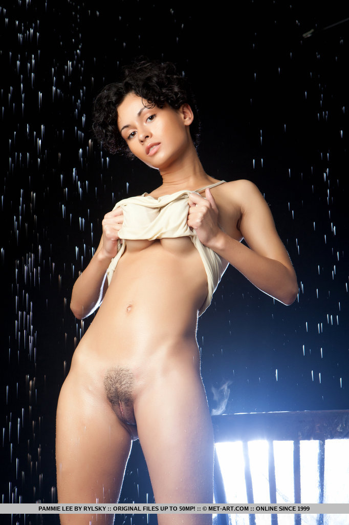 pammie-lee-wet-nude-brunette-metart-06
