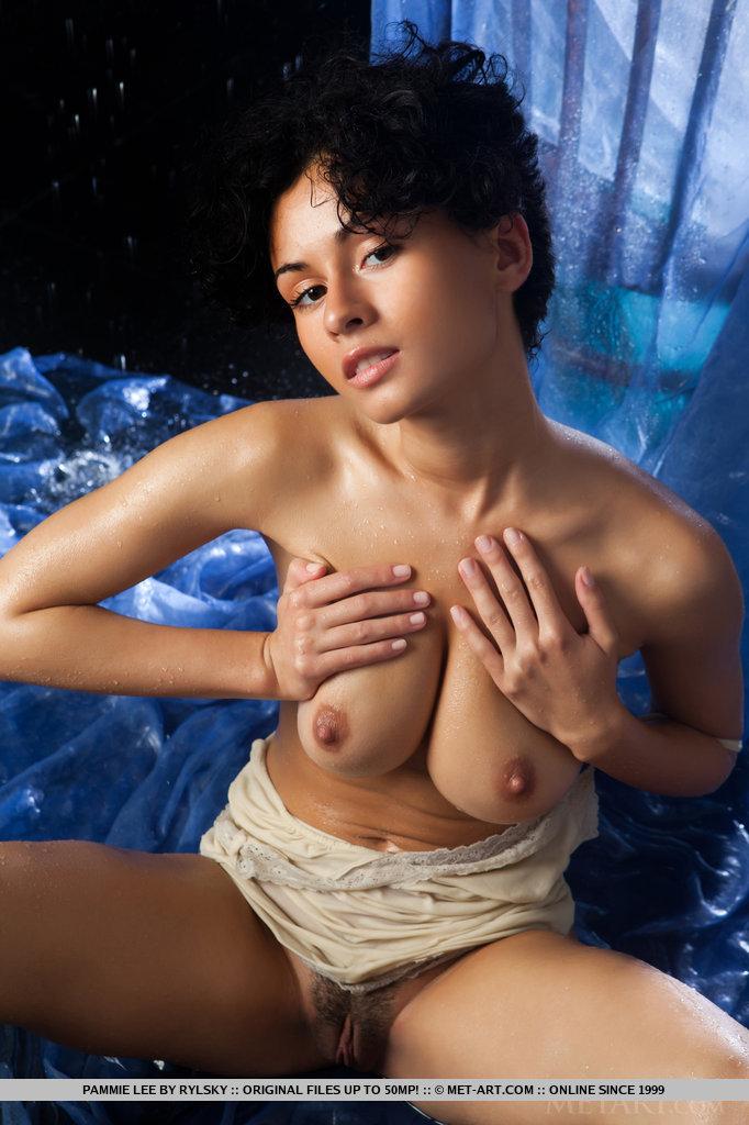 pammie-lee-wet-nude-brunette-metart-09
