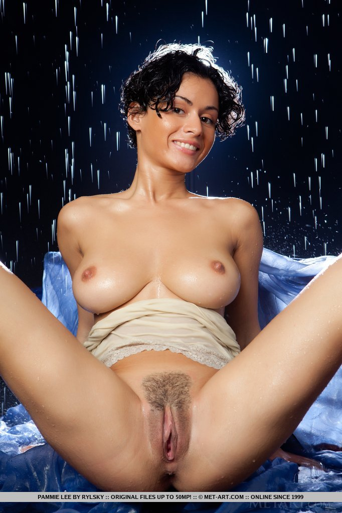 pammie-lee-wet-nude-brunette-metart-11