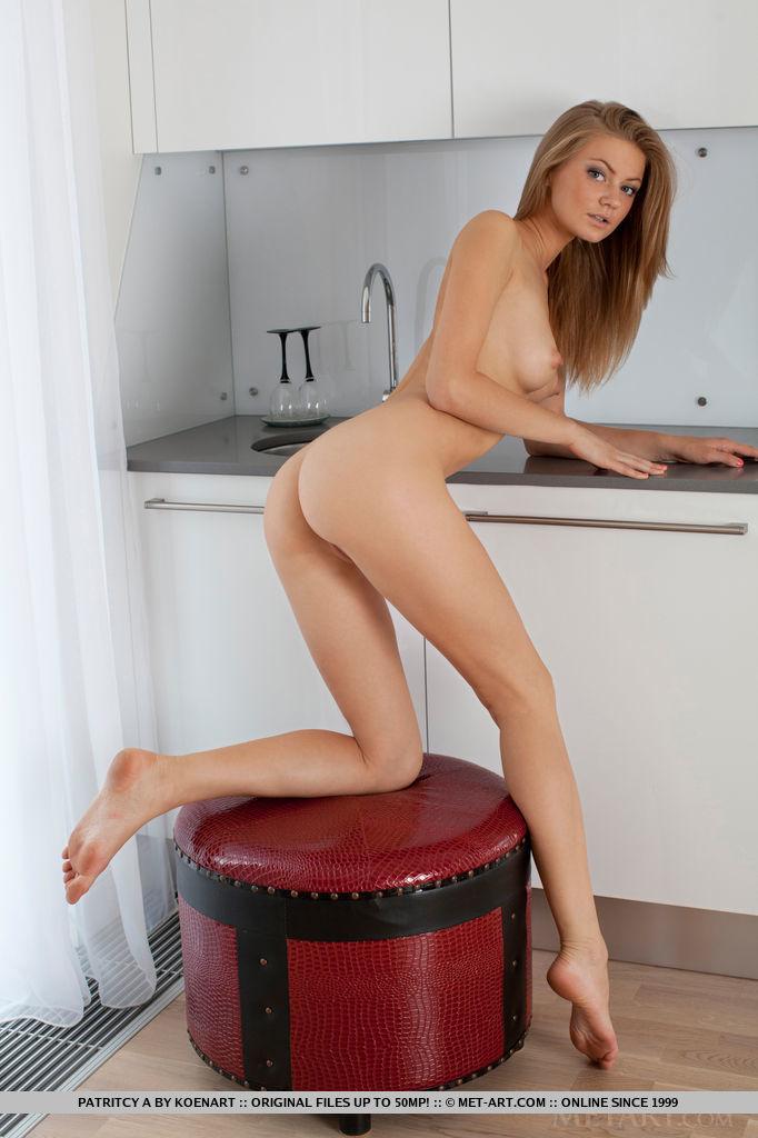 patritcy-a-kitchen-met-art-11