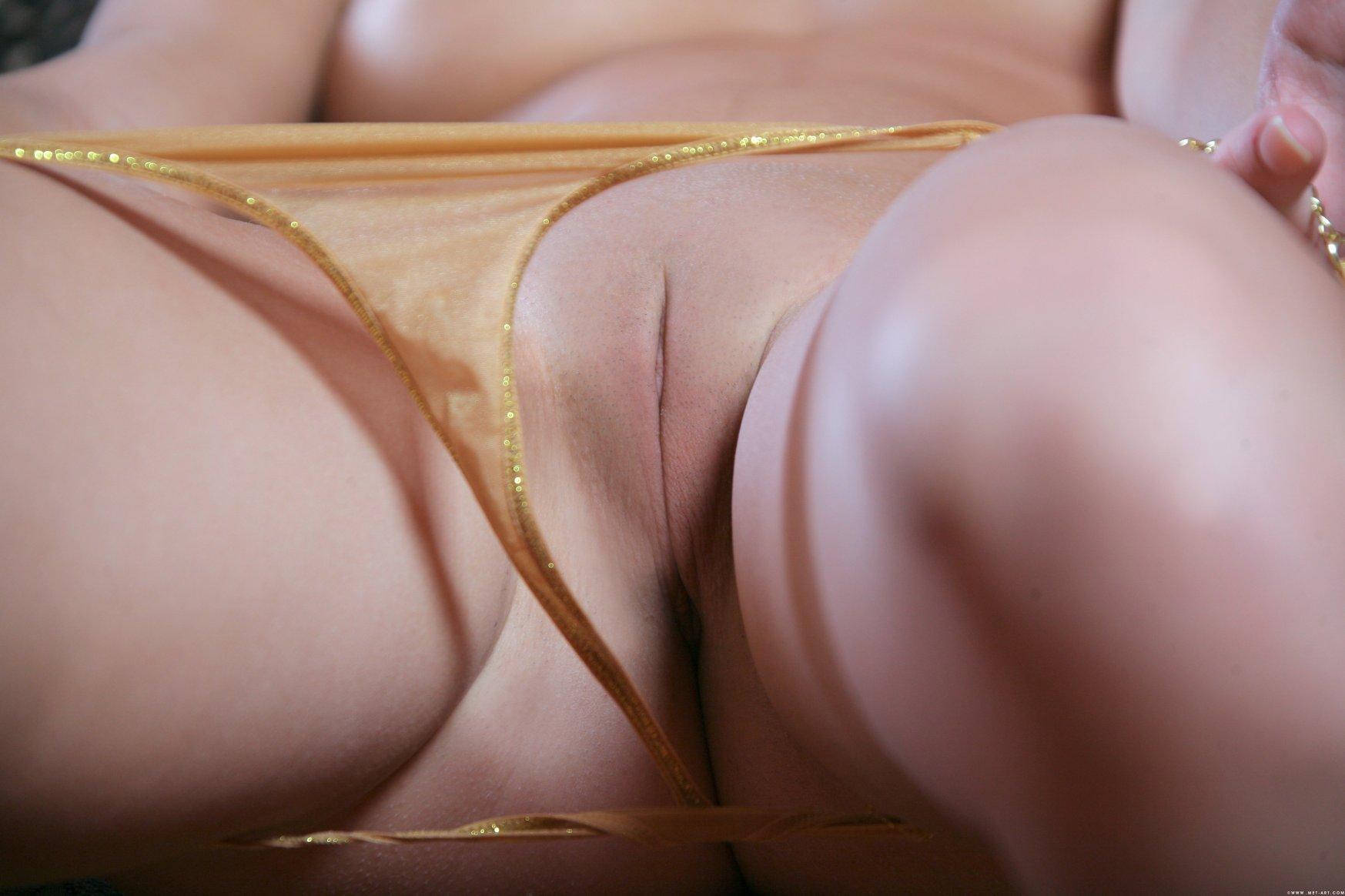 pussys-close-up-vol8-32