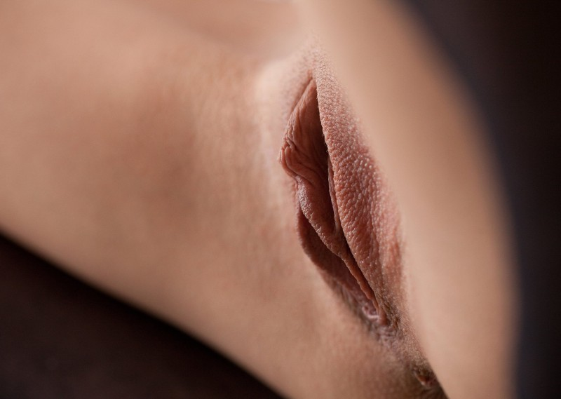 pussys-close-up-vol7-35
