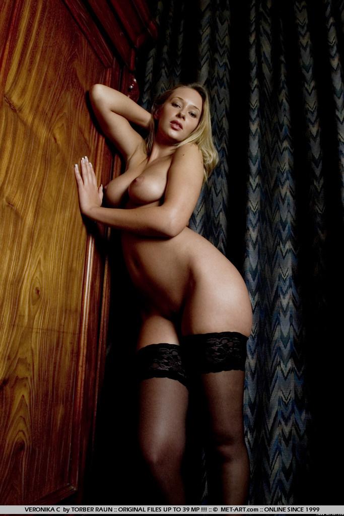 veronika-c-stockings-met-art-02