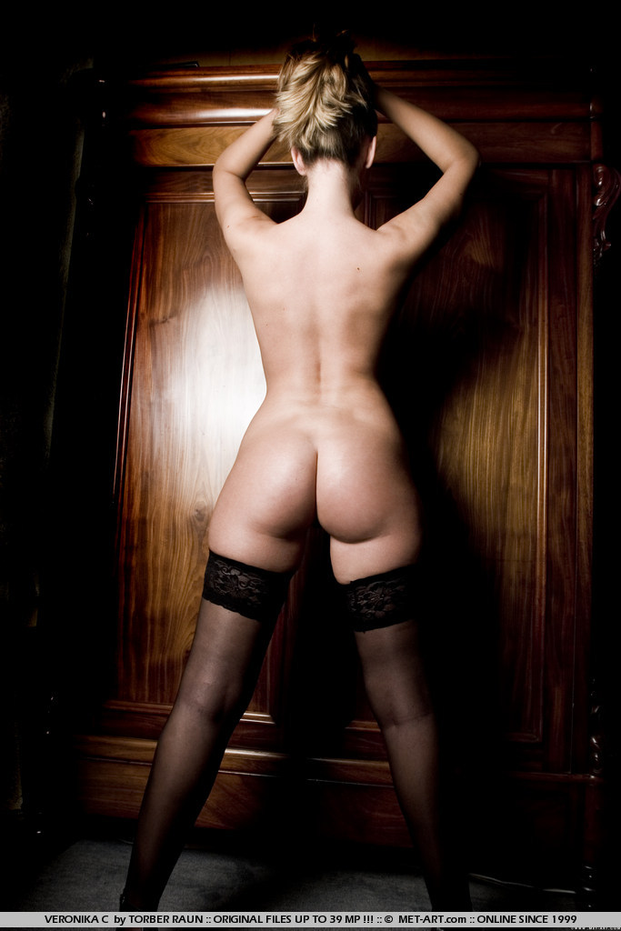 veronika-c-stockings-met-art-06