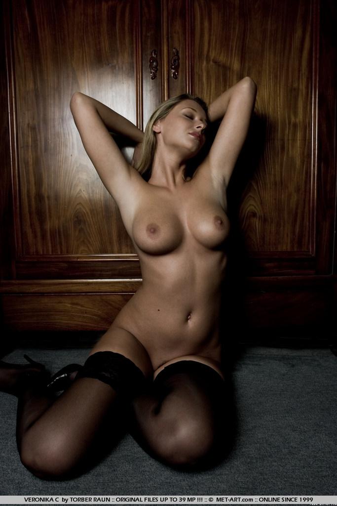veronika-c-stockings-met-art-11