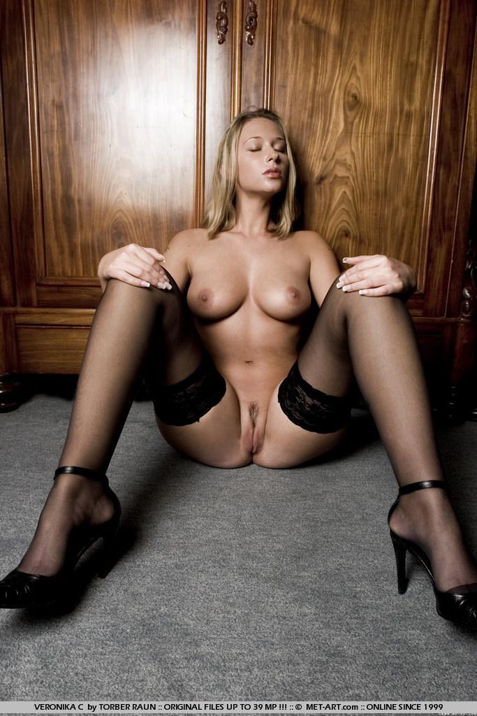 veronika-c-stockings-met-art-16