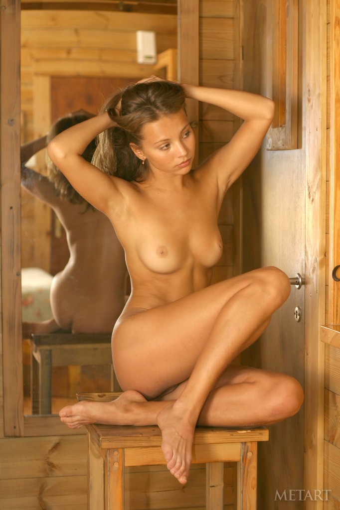 sandra-b-wooden-cottage-metart-01